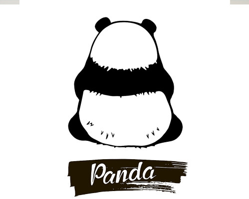 About Panda Education