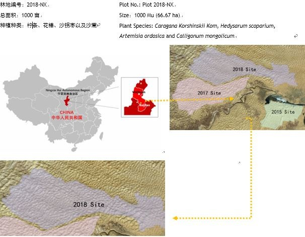 百万植树计划宁夏项目2018年林地示意图  Map of the Million Tree Project Ningxia Forest of Year 2018