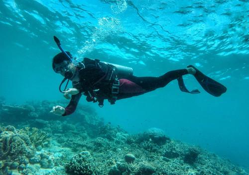 亚庇+仙本那群岛 7日 | 邂逅魔镜精灵,领略海岛奥秘,再做一场最冒险的梦