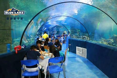 海洋馆夜宿( ◄点击图片浏览活动照片 )