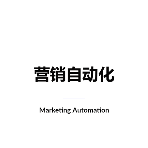 营销自动化 Marketing Automation