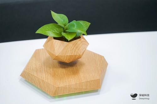 磁悬浮盆栽·年轮